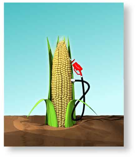 http://thehydrogenblog.files.wordpress.com/2010/03/biofuel-production-increases-greenhouse-gases-in-atmosphere.jpg